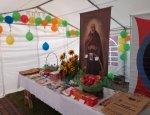 Katedra Siedlce - Parafialny Zespół Caritas